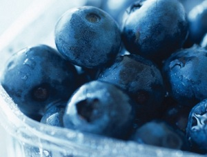 Blueberries in basket